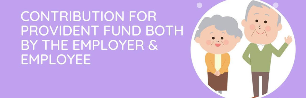 What Is The Contribution For Provident Fund Both By The Employer & Employee?