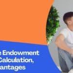 Life Insurance Endowment Plan: Return Calculation, Facilities, Advantages