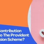 What Is The Contribution Percentage To The Provident Fund And Pension Scheme?