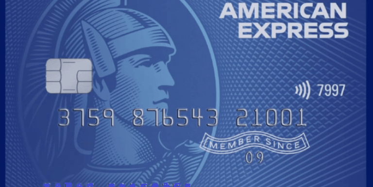 American Express Smartearn Credit Card And Its Review